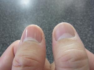 爪磨き3.JPG
