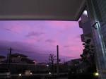 紫の空.JPG