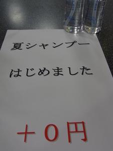 夏シャン1.JPG