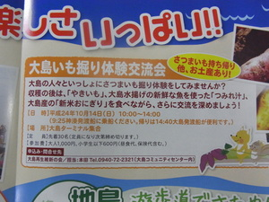 大島5.JPG