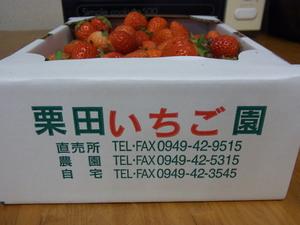 苺2.JPG