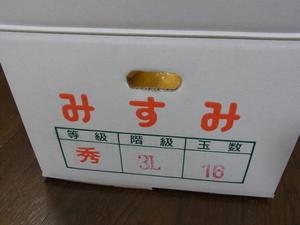 パール柑2.JPG