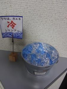 冷シャンプー5.JPG
