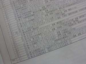 精華女子2.JPG